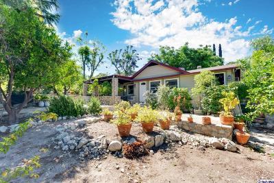 Tujunga Single Family Home For Sale: 10449 Pinyon Avenue