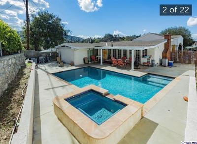 Tujunga Single Family Home For Sale: 9718 Pali Avenue