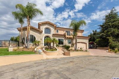 La Canada Flintridge Single Family Home For Sale: 4343 Vista Place