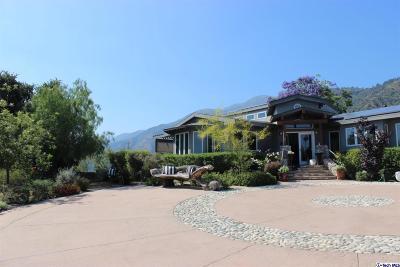 Pasadena Single Family Home For Sale: 2925 Lindaloa Lane