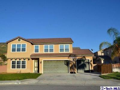 Riverside County Single Family Home For Sale: 1743 Tustin Court