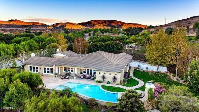 La Canada Flintridge Single Family Home For Sale: 823 Greenridge Drive