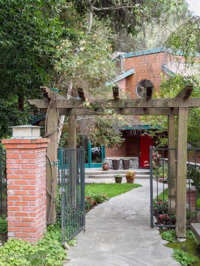 La Canada Flintridge Single Family Home For Sale: 5208 Palm Drive