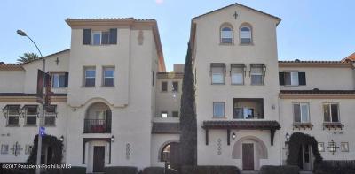 Pasadena Condo/Townhouse For Sale: 638 East Walnut Street