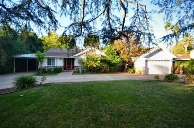 Pasadena Condo/Townhouse For Sale: 465 South Hudson Avenue #8