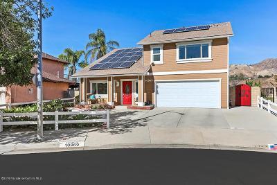 Sunland Single Family Home For Sale: 10969 Russett Avenue