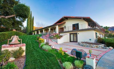 Santa Clarita Single Family Home For Sale: 15540 Knochaven Street