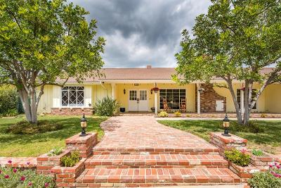 Northridge Single Family Home For Sale: 17353 Citronia Street