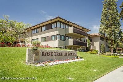 Pasadena Condo/Townhouse For Sale: 111 South Orange Grove Boulevard #109