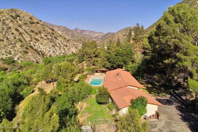 Tujunga Single Family Home Active Under Contract: 4137 Big Tujunga Canyon Road