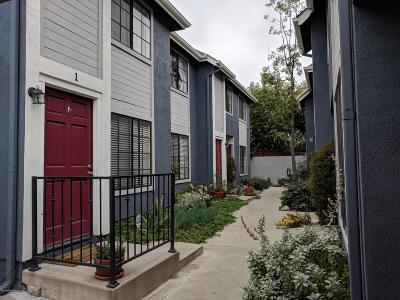Pasadena Condo/Townhouse For Sale: 45 Harkness Avenue #3