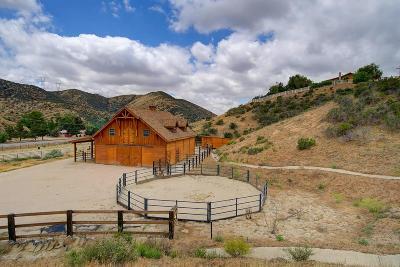 Agua Dulce Single Family Home For Sale: 33841 Rozich Road
