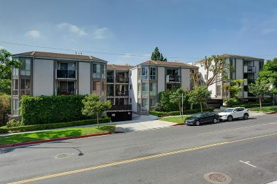 West Hollywood Rental For Rent: 8530 Holloway Drive #107