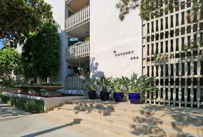 Pasadena Condo/Townhouse For Sale: 284 South Madison Avenue #205