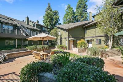 Pasadena Condo/Townhouse For Sale: 246 Alpine Street #7