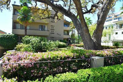 Pasadena Condo/Townhouse For Sale: 960 San Pasqual Street #210