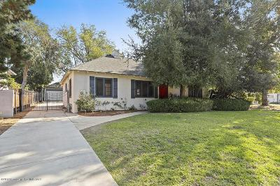 Pasadena Single Family Home For Sale: 860 South Los Robles Avenue