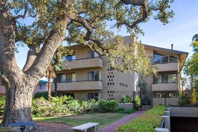 Pasadena Condo/Townhouse For Sale: 960 San Pasqual Street #309