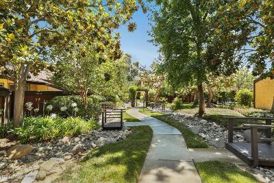 Pasadena Condo/Townhouse For Sale: 244 South Marengo Avenue