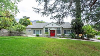 Altadena Single Family Home For Sale: 2556 Tanoble Drive