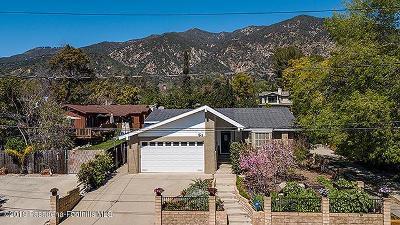 Sierra Madre Single Family Home For Sale: 273 West Laurel Avenue