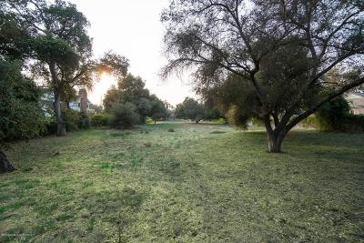 Pasadena Residential Lots & Land For Sale: Madre Street