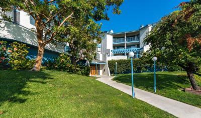Los Angeles Condo/Townhouse For Sale: 4260 Via Arbolada #218