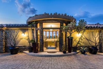 Shadow Hills Single Family Home For Sale: 10027 McBroom Street