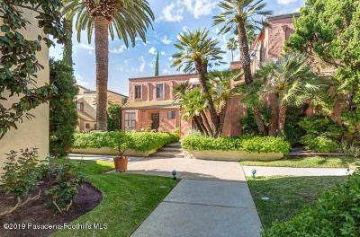 Pasadena Condo/Townhouse Active Under Contract: 309 Arlington Drive
