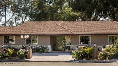 Altadena Single Family Home For Sale: 1617 Meadowbrook Road