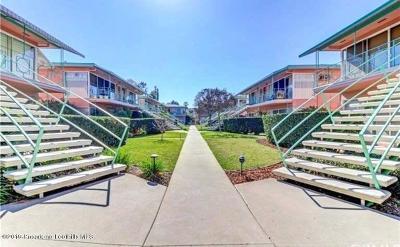 Pasadena Condo/Townhouse For Sale: 1000 San Pasqual Street #6
