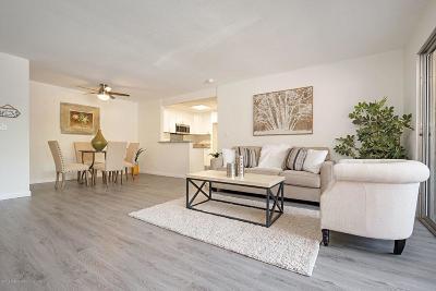 Pasadena Condo/Townhouse For Sale: 355 South Los Robles Avenue #137