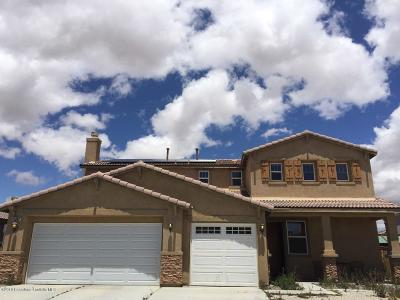 Adelanto Single Family Home For Sale: 11082 Continental Court