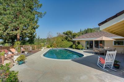 La Canada Flintridge Single Family Home For Sale: 1002 El Vago Street