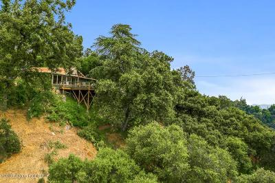 Altadena Single Family Home For Sale: 3665 Canyon Crest Road