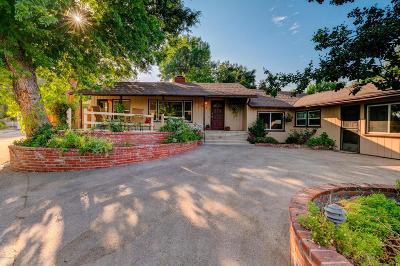 La Canada Flintridge Single Family Home For Sale: 835 Old Landmark Lane
