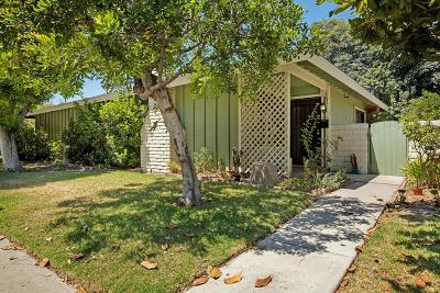 Pasadena Single Family Home For Sale: 1741 East Maple Street