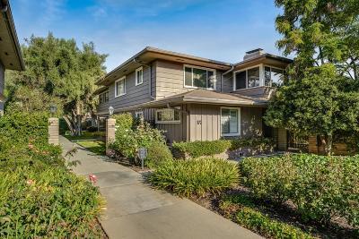 Pasadena Condo/Townhouse For Sale: 972 South Orange Grove Boulevard #D