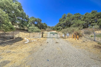 Residential Lots & Land For Sale: Pineview
