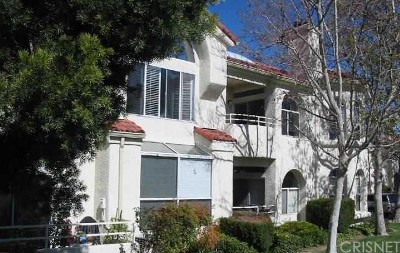 Condo/Townhouse Sold: 25941 Stafford Canyon Road #D