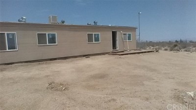 Yucca Valley Single Family Home For Sale: 627 Geronimo
