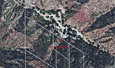 Residential Lots & Land For Sale: 25554 Sand Canyon Road