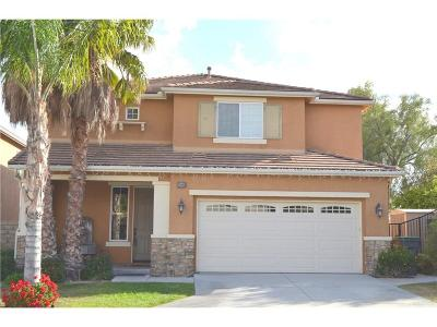Saugus Single Family Home For Sale: 19980 Sassoon Place