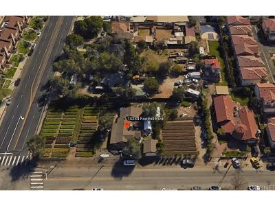 Sylmar Single Family Home For Sale: 14234 Foothill Boulevard