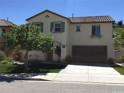 Canyon Country Single Family Home For Sale: 17172 Silk Tree Way