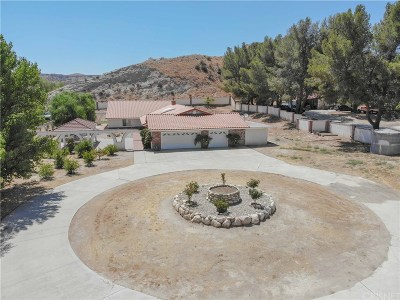 Canyon Country Single Family Home For Sale: 30675 Lindsay Canyon Road