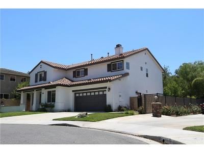 Saugus Single Family Home For Sale: 22362 Homestead Place