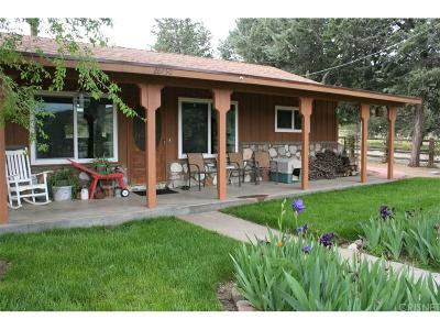Lake Hughes Single Family Home For Sale: 26750 Pine Canyon