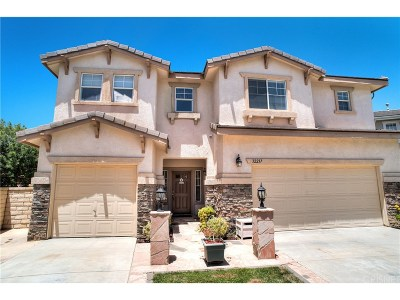 Castaic Single Family Home For Sale: 32237 Vista Pointe Place
