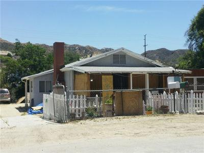 Canyon Country Single Family Home For Sale: 17040 Forrest Street